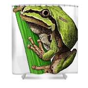Arizona Tree Frog Shower Curtain
