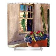 Arizona Window Shower Curtain