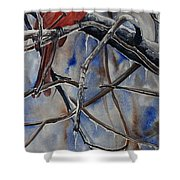 Arkansas Cardinal Shower Curtain