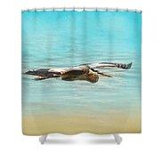 Arrival - Blue Heron - Wildlife Shower Curtain