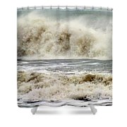 Arrival Of Sandy Shower Curtain