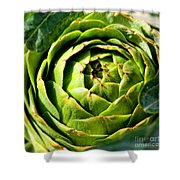 Art E. Choke - Artichokes By Diana Sainz Shower Curtain