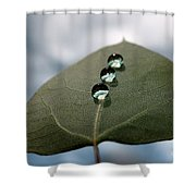 Art Of Balance Shower Curtain