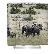 Art Of Horse Plowing Shower Curtain