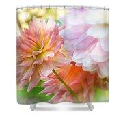 Art Of The Feminine Shower Curtain