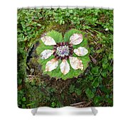 Art Of The Woods 2 Shower Curtain