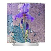 Art On Plaster Shower Curtain