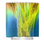 Art Therapy 27 Shower Curtain