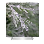 Artemesia Powis Castle Shower Curtain