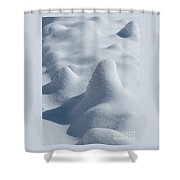 Artful Snowfall Shower Curtain