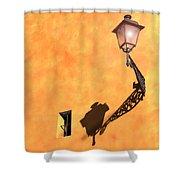 Artful Street Lamp Shower Curtain