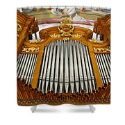 Arth Goldau Organ Shower Curtain
