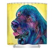 Arthur  Shower Curtain