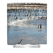 Artic Thaw Shower Curtain