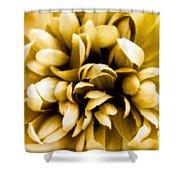 Artificial Flower Shower Curtain