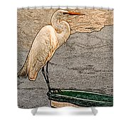 Artistic Egret And Boat Shower Curtain