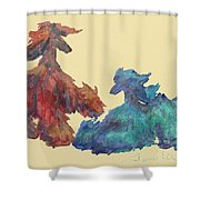 Artistic Impression Shower Curtain