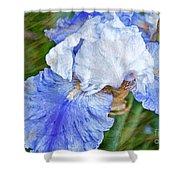 Artistic Japanese Iris Blue And White Flower Shower Curtain