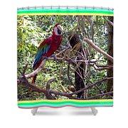 Artistic Wild Hawaiian Parrot Shower Curtain