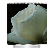 Artistry In Bloom Shower Curtain
