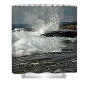 Artist's Point Shower Curtain