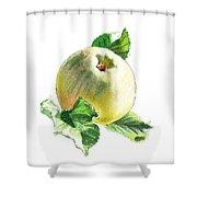 Artz Vitamins Series A Happy Green Apple Shower Curtain