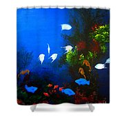 Aruba Reef Shower Curtain