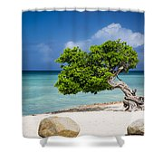 Aruba Tree Shower Curtain
