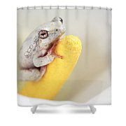 Arum Lily Frog Shower Curtain