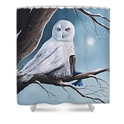 White Snow Owl Painting Shower Curtain