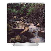 As Free As This Shower Curtain by Laurie Search