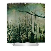 As Night Apaproaches  Shower Curtain