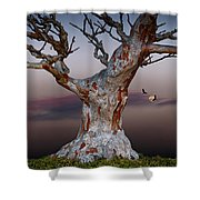 As Night Settles Shower Curtain