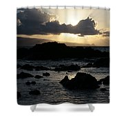 As Once The Winged Energy Shower Curtain