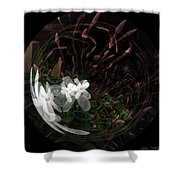 As Wood Nymphs Frolic Shower Curtain