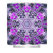 Ascended Spirit Shower Curtain by Derek Gedney