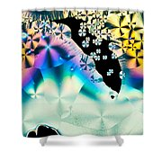 Ascorbic Acid Crystals In Polarized Light Shower Curtain