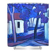 Ashcroft Manor Buildings Shower Curtain