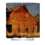 Ashland Barn In Evening Light Shower Curtain