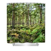 Ashley Heath Forest Shower Curtain
