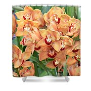 Asian Corsage Orchid Shower Curtain