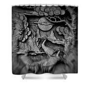 Asian Intricacy Shower Curtain