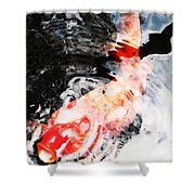 Asian Koi Fish - Black White And Red Shower Curtain