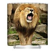 Aslan's Roar Shower Curtain