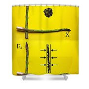 Asparagus And Black Rice Depicting Heisenberg Uncertainty Food Physics Shower Curtain