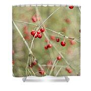 Asparagus Bokeh Shower Curtain