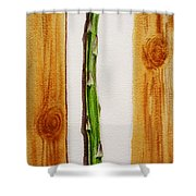 Asparagus Tasty Botanical Study Shower Curtain