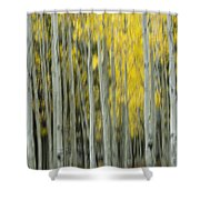 Aspen Abstract  Shower Curtain