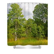 Aspen And Others Shower Curtain