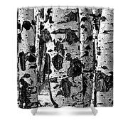 Aspen Art Shower Curtain